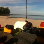 Tahitian Vanilla Panna Cotta, Blackberry Gastrique